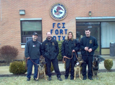 K-9 Search & Detection at Fort Dix